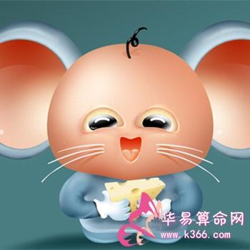 属鼠的人性格特点怎么样?插图