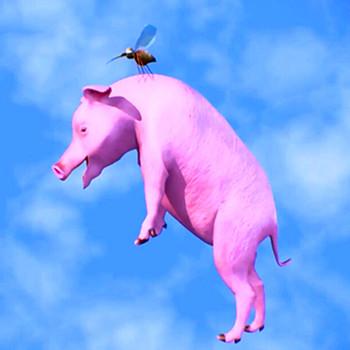 梦见天上有猪飞