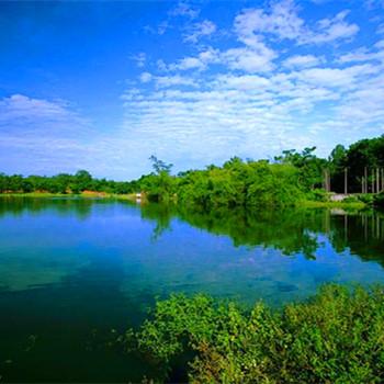 梦见池塘水满