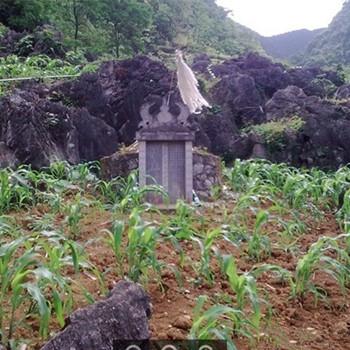 女人梦见坟墓旁修路