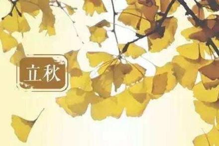 """立秋的""""秋老虎""""是什么意思?秋老虎象征什么?"""