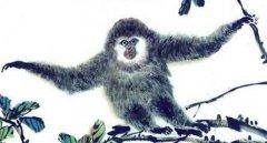 1968年属猴的人2020年运势及运程大全解析