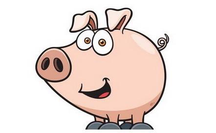 2019年屬豬人