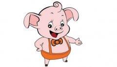 生肖猪在2019年的本命年禁忌你知道吗?