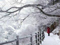 大雪的谚语,关于大雪的谚语大全!