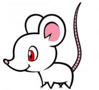 2019年属鼠人爱情方位有哪些?