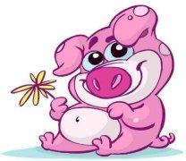 2019年属猪人爱情方位有哪些?