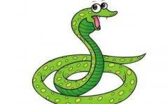 生肖蛇出生在辰时的命运怎么样?