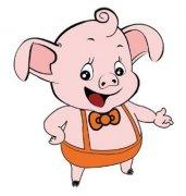 紅木豬擺件風水有什么宜忌?紅木豬擺件風水講究