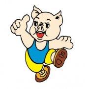 屬豬人開店風水講究,屬豬人風水禁忌