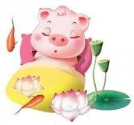 風水豬可以擺臥室嗎?有什么講究?