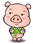 豬年下半年桃花運怎么樣?