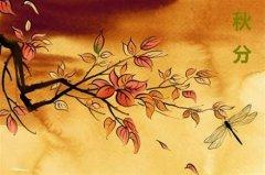 秋分是代表著秋天結束了嗎?秋分代表什么?