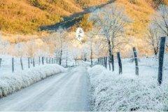 冬至开始数九了吗?2019年数九什么时候开始?