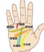 手掌上的太陽線怎么看富貴程度?什么是太陽線?