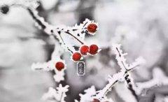 2019年冬至幾點日落,冬至白天長還是夜晚長?