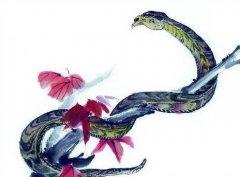 屬蛇人和屬龍人2020年結婚好嗎,可以領證嗎?