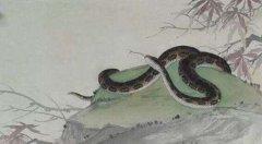 屬蛇人2020年閏四月能搬家嗎,搬家吉利嗎?