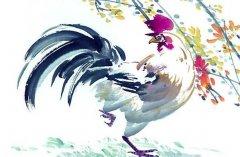 屬雞人2020年正月運勢如何,適合裝修嗎?