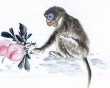 生肖猴正月初一春節出生的人是什么命?屬猴春節出生好不好?
