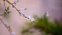立春打春吃蘿卜是什么意思?為什么立春吃蘿卜?