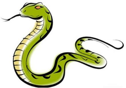 属蛇人2021年全年运势完整版 今年属蛇的财运和运气如何2021插图