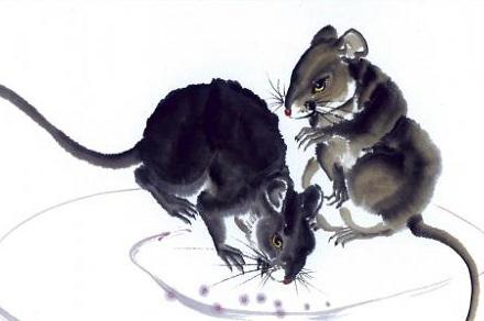 属鼠人2021年全年运势完整版 今年属鼠的财运和运气如何2021插图1