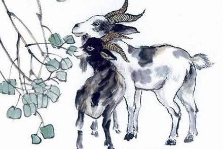 属羊人2021年全年运势完整版 今年属羊的财运和运气如何2021插图