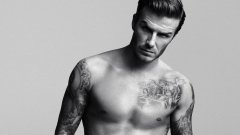 男人胸部有毛,有胸毛的体相解析