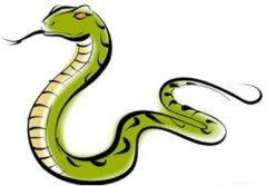 2001年出生属蛇贵人是什么生肖?2001年属蛇2021年运势好吗?