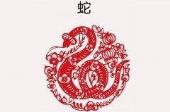 属蛇2025年出生天乙贵人是谁?天乙贵人是最大的贵人吗?