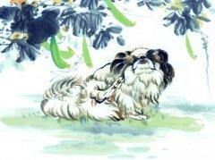 大雪出生的生肖狗有福气吗?命运如何?