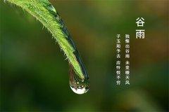 2021年4月20日谷雨节气不宜做什么?谷雨节气谚语有哪些?