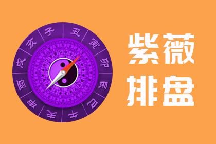 紫微斗数在线排盘