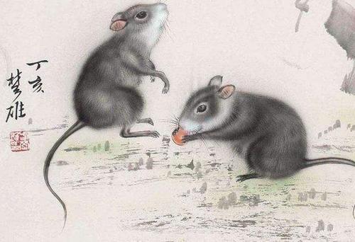 生肖鼠2020本命年可以帶玉嗎?本命年帶玉有什麼講究?_華易算命網